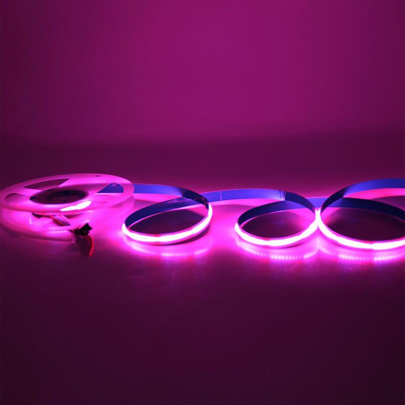dream color cob led