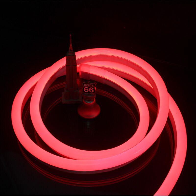 Red Neon Flex Light