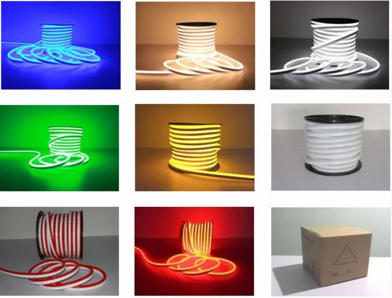 Neon LED Flex Package