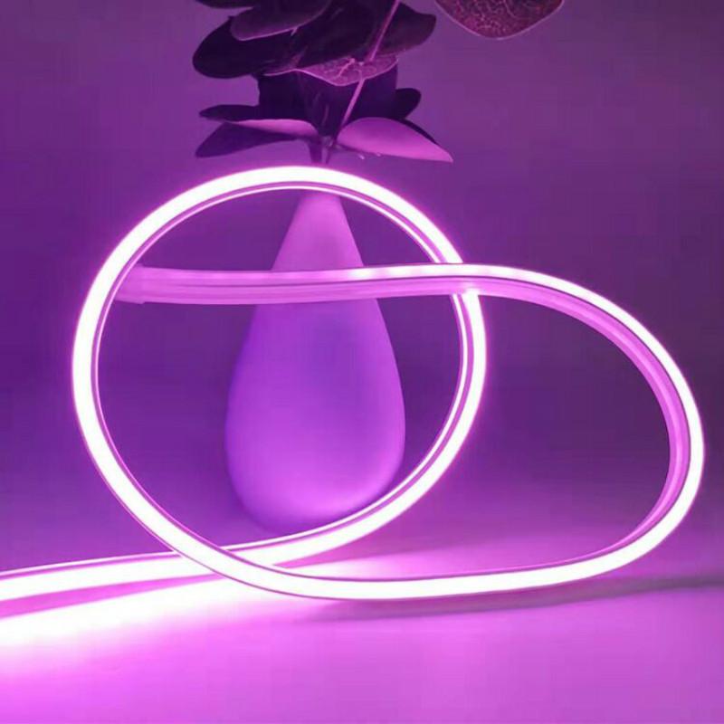 addressable neon flex