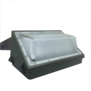 Paquete de 100 vatios pared LED