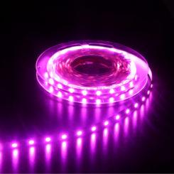 Purple LED Strip Lights