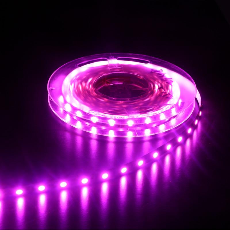 Purple led strip lights flexible smd 5050 led strips 24 volt led purple led strip lights aloadofball Images
