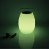 LED Speaker Light