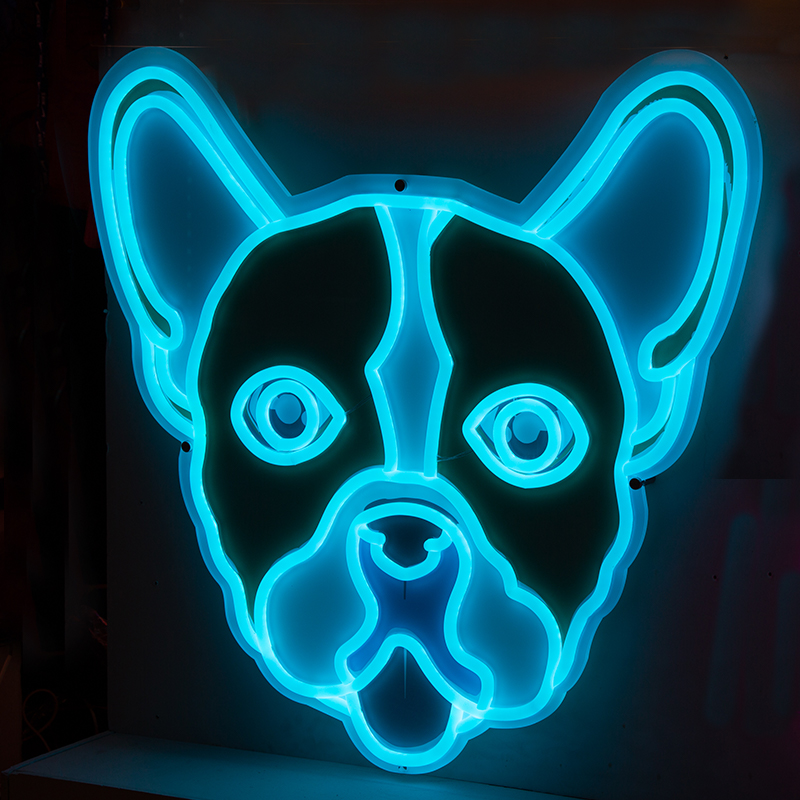neon dog